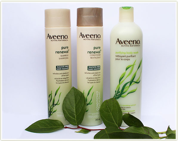 Aveeno Pure Renewal Shampoo + Conditioner and Purifying Body Wash in Sea Kelp + Nourishing Oatmeal